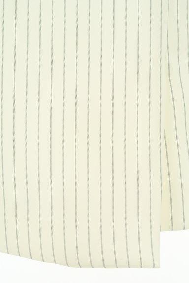 MISCH MASCH(ミッシュマッシュ)の古着「上品レディなストライプスカート(スカート)」大画像5へ