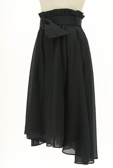 LAISSE PASSE(レッセパッセ)の古着「ハイウエストフレアスカート(スカート)」大画像3へ