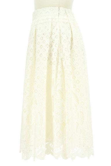WILLSELECTION(ウィルセレクション)の古着「タックフレア総レーススカート(スカート)」大画像3へ