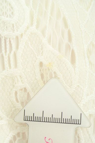 WILLSELECTION(ウィルセレクション)の古着「タックフレア総レーススカート(スカート)」大画像5へ