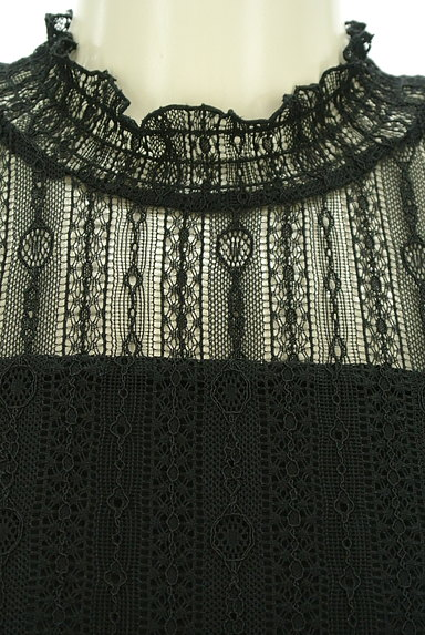 LAISSE PASSE(レッセパッセ)の古着「シャーリングハイネックレースプルオーバー(カットソー・プルオーバー)」大画像4へ