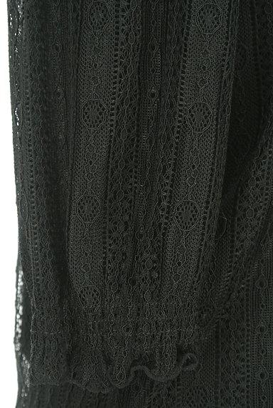 LAISSE PASSE(レッセパッセ)の古着「シャーリングハイネックレースプルオーバー(カットソー・プルオーバー)」大画像5へ