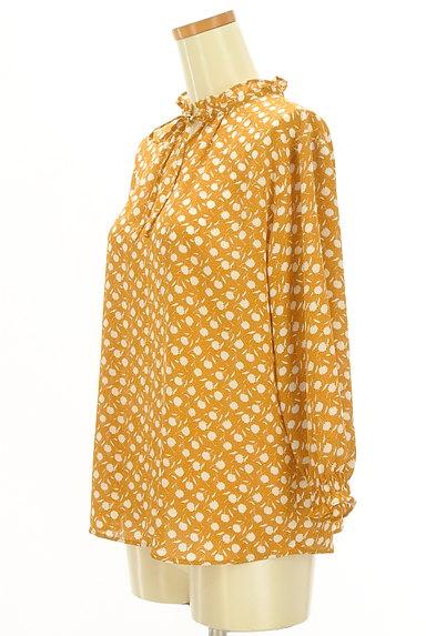 McGREGOR(マックレガー)の古着「花柄×ドットシフォンカットソー(ブラウス)」大画像3へ