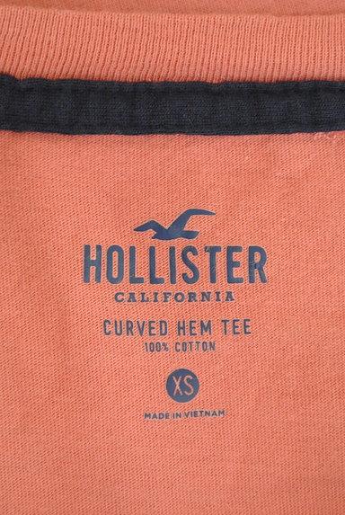 Hollister Co.(ホリスター)の古着「ラウンドヘムアイコン刺繍Tシャツ(Tシャツ)」大画像6へ