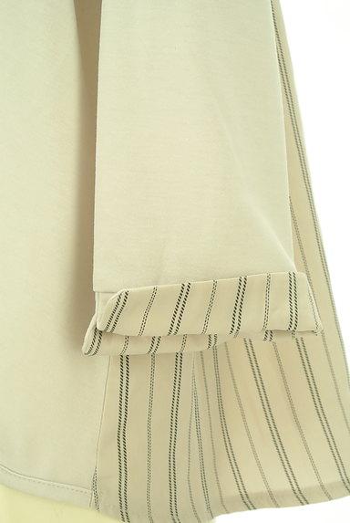 axes femme(アクシーズファム)の古着「バックストライプ裾タックカットソー(カットソー・プルオーバー)」大画像5へ