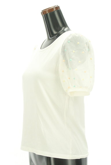 Par Avion(パラビオン)の古着「ドット刺繍入りシアー袖カットソー(カットソー・プルオーバー)」大画像3へ