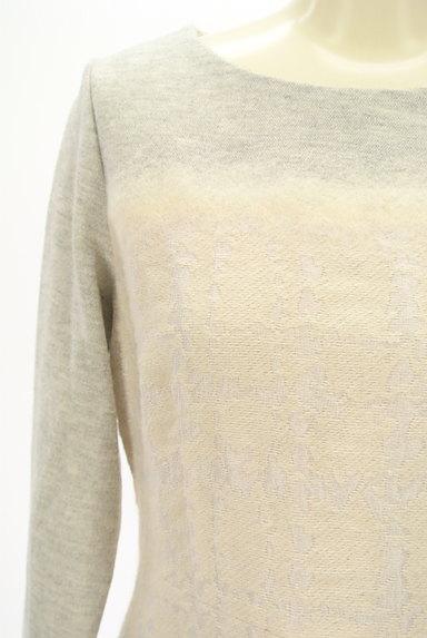 LAUTREAMONT(ロートレアモン)の古着「刺繍風織地膝下丈起毛ワンピース(ワンピース・チュニック)」大画像4へ